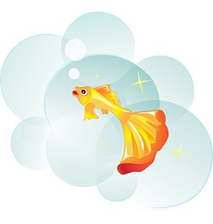 Goldfish as a symbol of desire vector