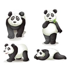A panda vector