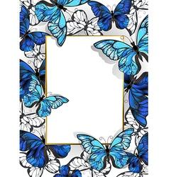 Rectangular Banner with Butterflies Morpho vector image