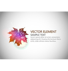 background autumn single leaf text vector image