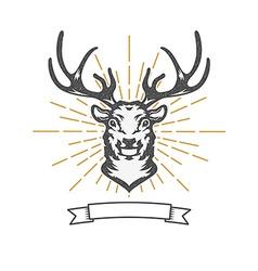 deer head with sun burst vector image vector image