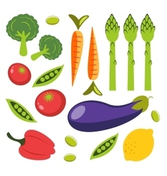 Fresh organic vegetables colorful set vector