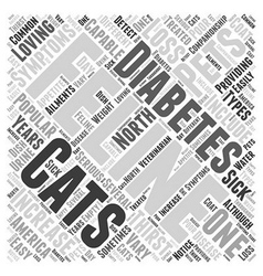 Cats and feline diabetes word cloud concept vector