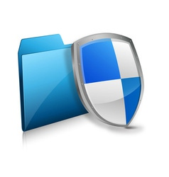 file and protection shield vector image vector image