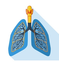 Flat design icon of human lungs vector image vector image