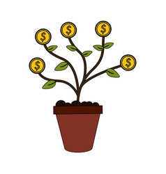 color image cartoon potted plant with coins vector image vector image