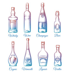 colorful alcohol bottles collection vector image vector image
