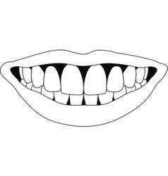 perfect smile teeth vector image