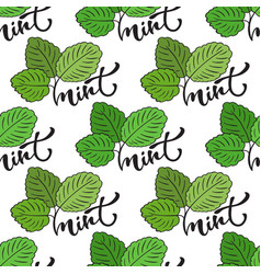 seamless mint leaf pattern print for healthy vector image