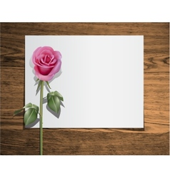 Paper trifold vector