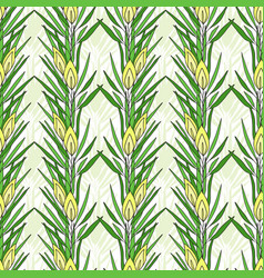 seamless pattern with rooibos plant herbal tea vector image vector image