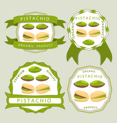 The theme pistachio vector