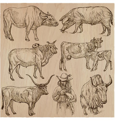 Farm animals - an hand drawn pack collection vector