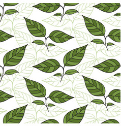 Seamless pattern with tea leaves for wrapping vector