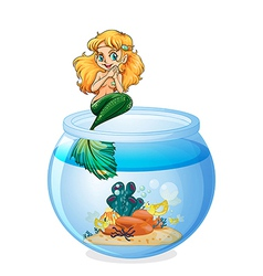 A jar with a mermaid vector image vector image