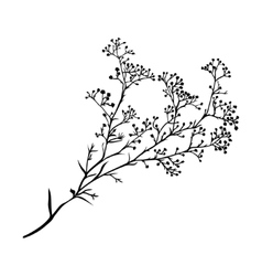 Branch of beautiful hand-drawn silhouette vector image