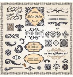 calligraphic designcs7 vector image vector image