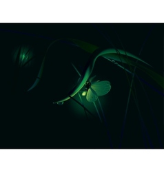 Moth at night vector