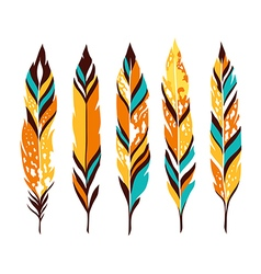 Bird colored feathers set vector