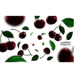 Falling black cherries elements realistic cherry vector