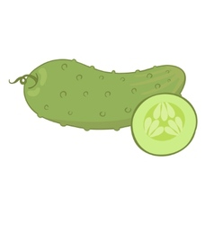Fresh cucumber vector image