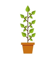 leafs plant ecology symbol vector image vector image
