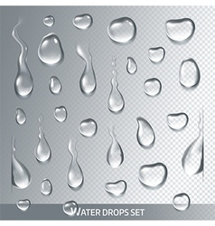 Realistic transparent drops pure clear water vector