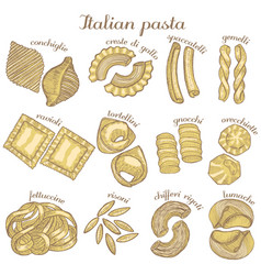 Colored set of different pasta shapes vector