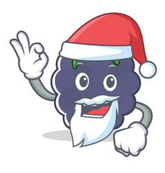 Santa blackberry character cartoon style vector