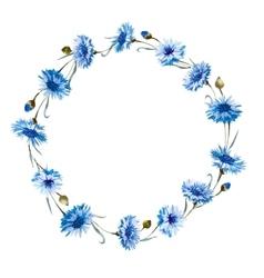 Cornflower watercolor wreath vector image