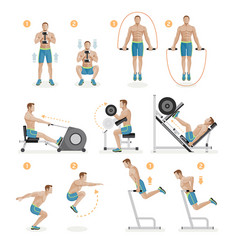 gym exercises machines sports equipment vector image vector image