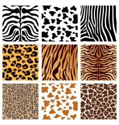 Animal prints vector