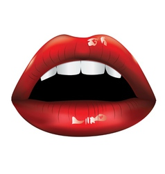 Beautiful red lips vector image vector image