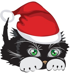 Kitten wearing a santa claus hat vector