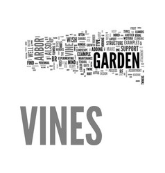 A guide to vines and how to vine beauty with your vector