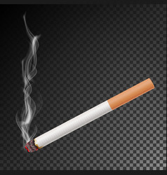 Realistic cigarette with smoke isolated vector