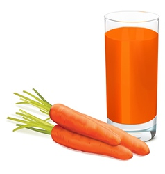 Carrots juice1 vector