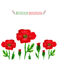 Watercolor field with red poppies banner with red vector