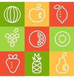 Fruits in line art style set vector