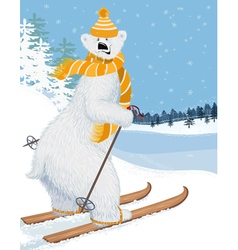 Bear skier vector image vector image