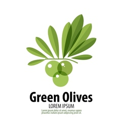 Green olives logo design template harvest or food vector