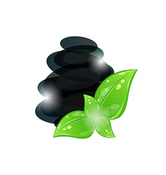 Cairn stones with eco green leaves isolated vector image vector image