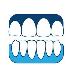 Jaw with teeth icon vector