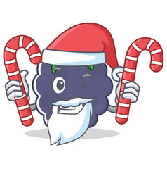 Santa with candy blackberry character cartoon vector