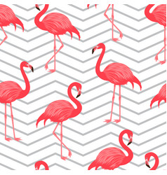 Seamless pattern with red flamingo vector