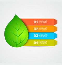 abstract leaf menu or infographic elements vector image
