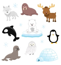 Arctic animals vector