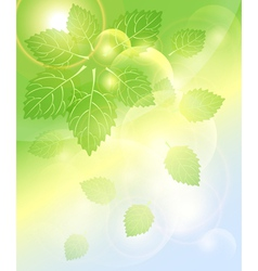Abstract spring background with leaves bubbles and vector image