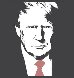 american president donald trump flat vector image