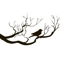 Bird at tree silhouettes vector